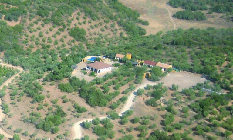 huizen van bovenaf